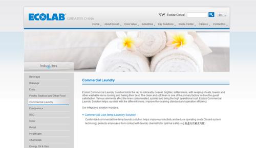 DAVYIN web design portfolio - Ecolab - Served industries
